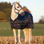 Horseware Amigo Mio 150g Stable Rug ABSB22-£34.99
