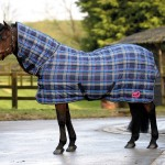 Quiltmasta 350 fixed Neck Stable Rug MR277