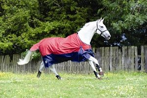 Zing Lightweight Check Turnout Rug MR336
