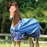 Masta Avante Light Foal Turnout Rug - MR315