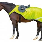 Horseware Amigo Reflective Competition Sheet
