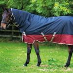 Horseware Amigo Mio 200g All in One Turnout AASJ32 /AASJ42
