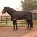 Masta Avante 300 Fixed Neck Stable Rug MR329