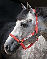 Horseware Fieldsafe Headcollar- DHHF40