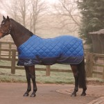 Masta Avante 300g Pony Stable Rug MR331