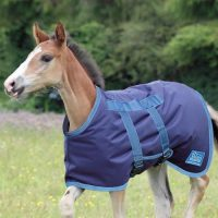 Shires Tempest Foal Rug - 46