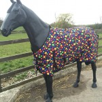 White Horse Equestrian Multi-Spot Bubble Lightweight Turnout