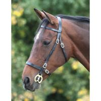 Blenheim Plain Inhand Bridle- 4135