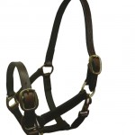 John Whitaker Breeder Leather Headcollar - HC056