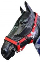 Cottage Craft Padded Headcollar - CC5303
