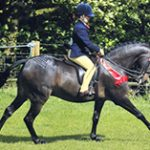 Riding & Competition Wear